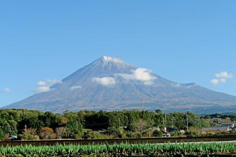01唯一の富士山