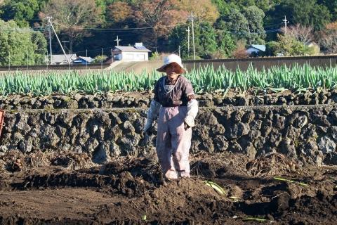 02農作業中のおばあさん