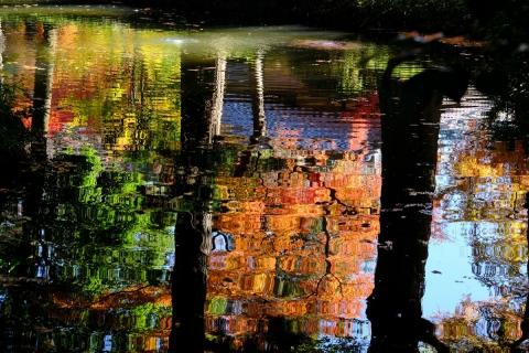 02-6平林寺池に映る
