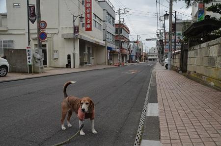 20171004 鹿島商店街七福神02