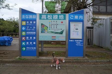 0171004高松緑地公園02