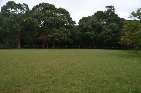 0171004高松緑地公園16