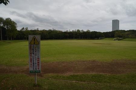 0171004高松緑地公園13