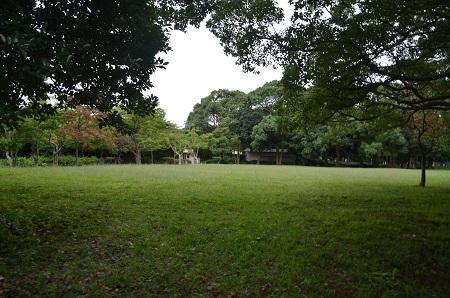 0171004高松緑地公園22