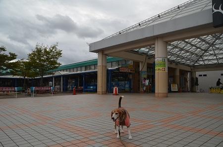 20171004道の駅いたこ03