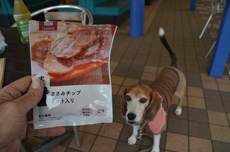20171004道の駅いたこ13
