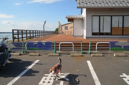 20171004道の駅たまつくり05