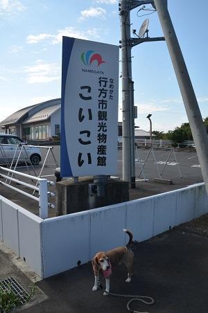 20171004道の駅たまつくり04