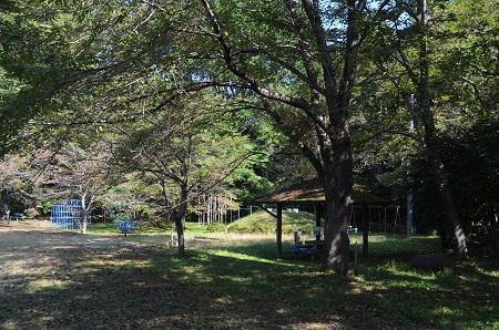 20171009藤崎小学校07