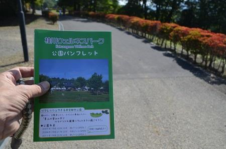 20171009桂川ウエルネスパーク06