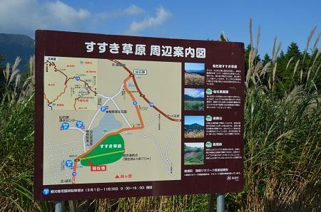 20171010仙石原11