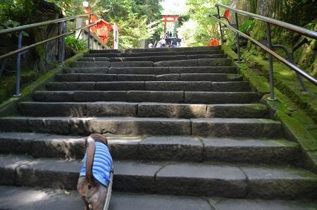 20171010箱根神社12