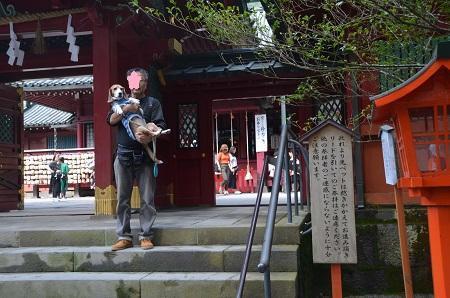 20171010箱根神社16