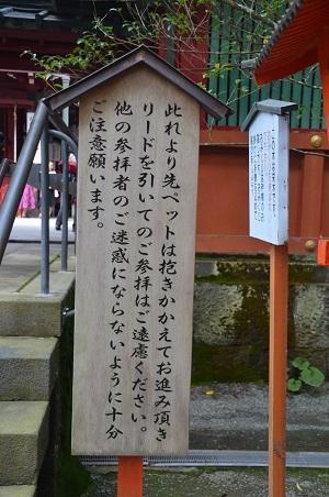 20171010箱根神社15