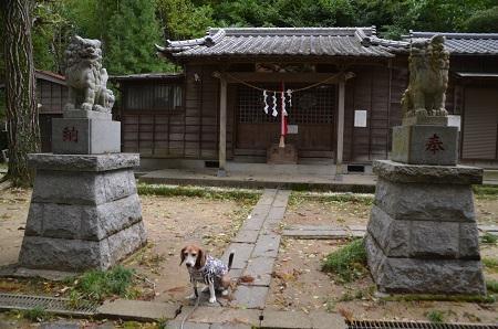 20171023愛宕神社10