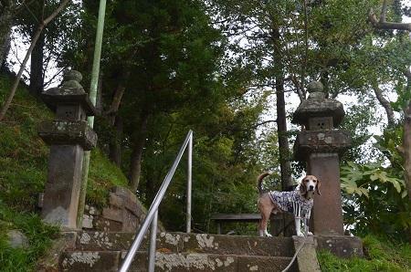20171023愛宕神社07