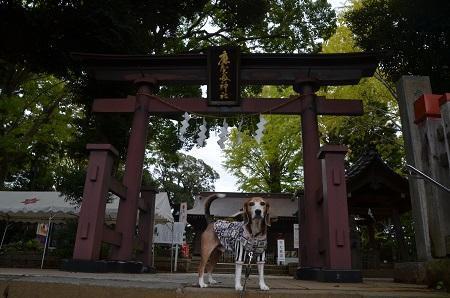 20171023麻賀田神社04