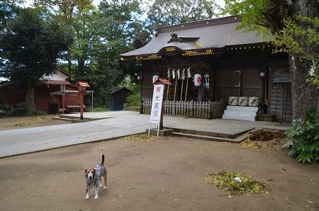 20171023麻賀田神社10