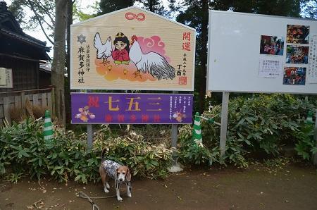 20171023麻賀田神社17