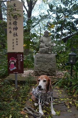 20171023麻賀田神社14