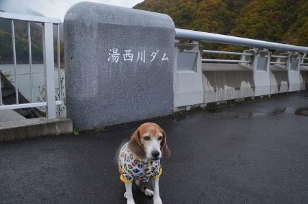 20171030湯西川ダム03