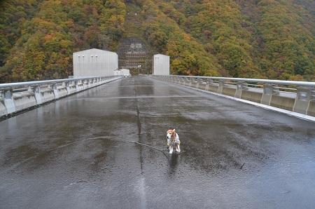 20171030湯西川ダム07