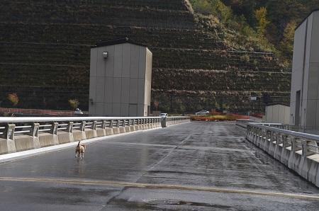20171030湯西川ダム17