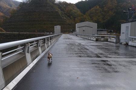 20171030湯西川ダム16