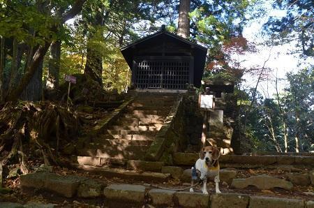 20171031滝尾神社07