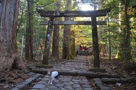 20171031滝尾神社16