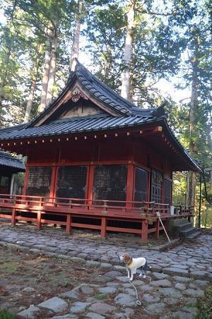 20171031滝尾神社23