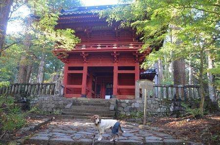 20171031滝尾神社20
