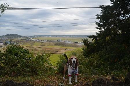 20171111江戸崎の景観05