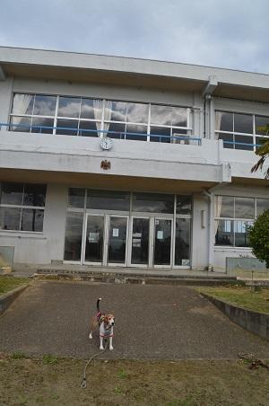 20171111鳩崎小学校07