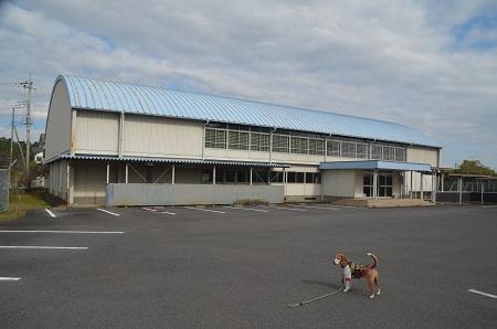 20171111鳩崎小学校14