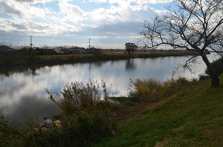 20171111 新利根川の釣り場06