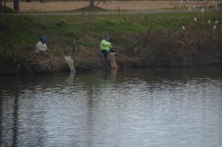 20171111 新利根川の釣り場10