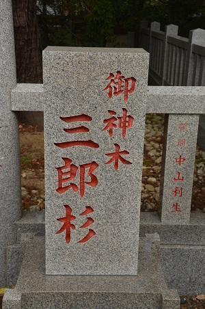 20171111阿波の大杉神社16