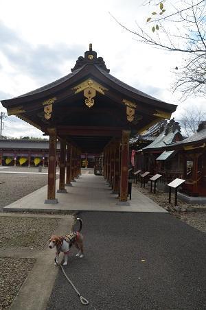 20171111阿波の大杉神社14
