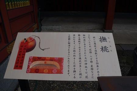 20171111阿波の大杉神社19