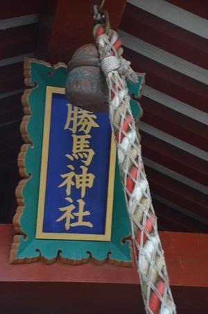20171111阿波の大杉神社31