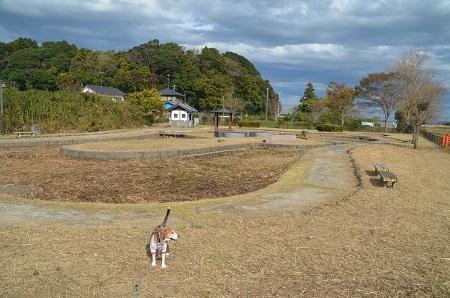 20171111阿波水辺公園09