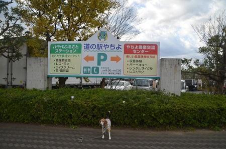 20171119道の駅 八千代04