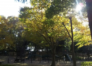 koen-maruyama-11gatu5.jpg