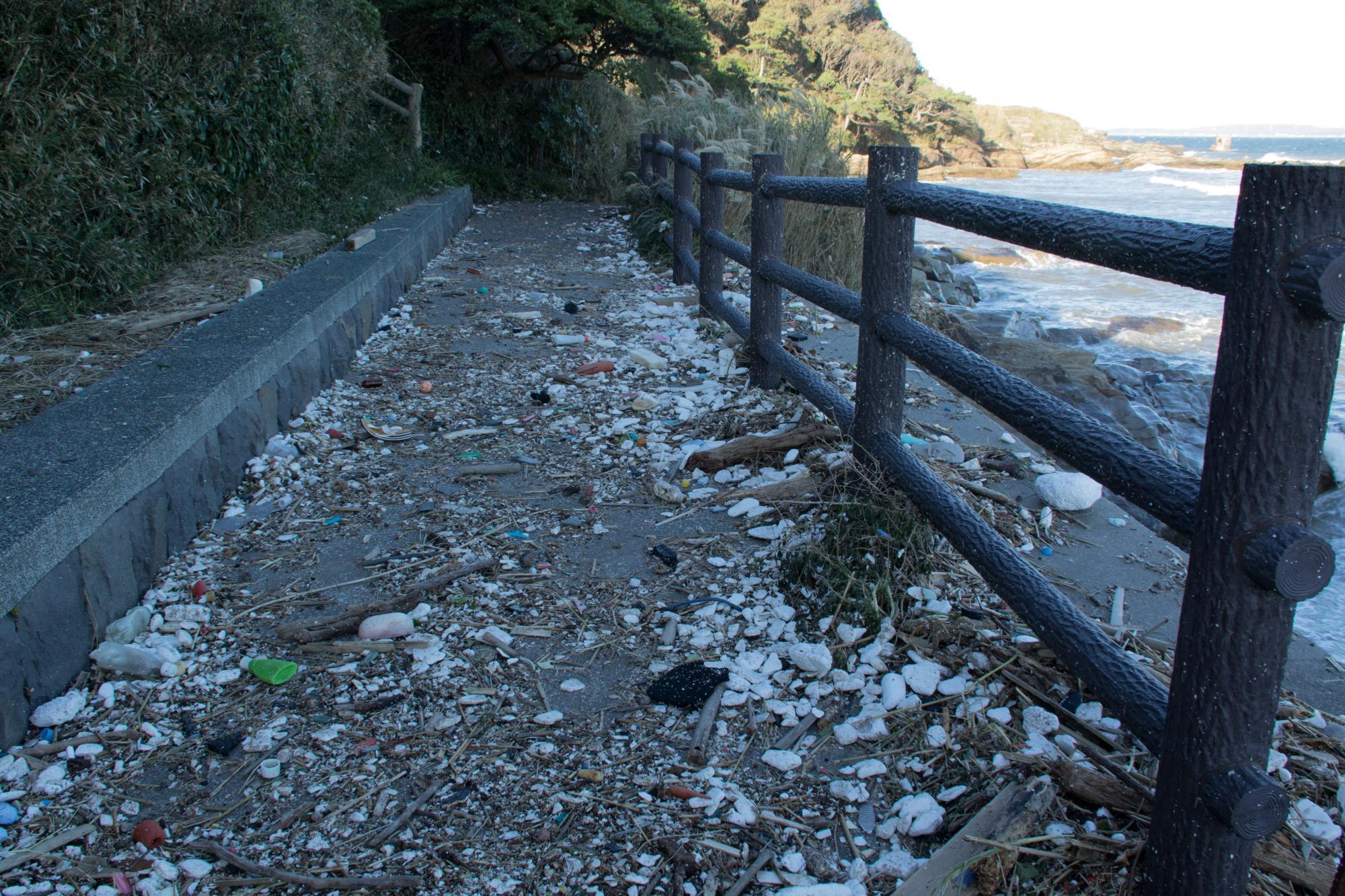 20171023-台風一過ゴミ