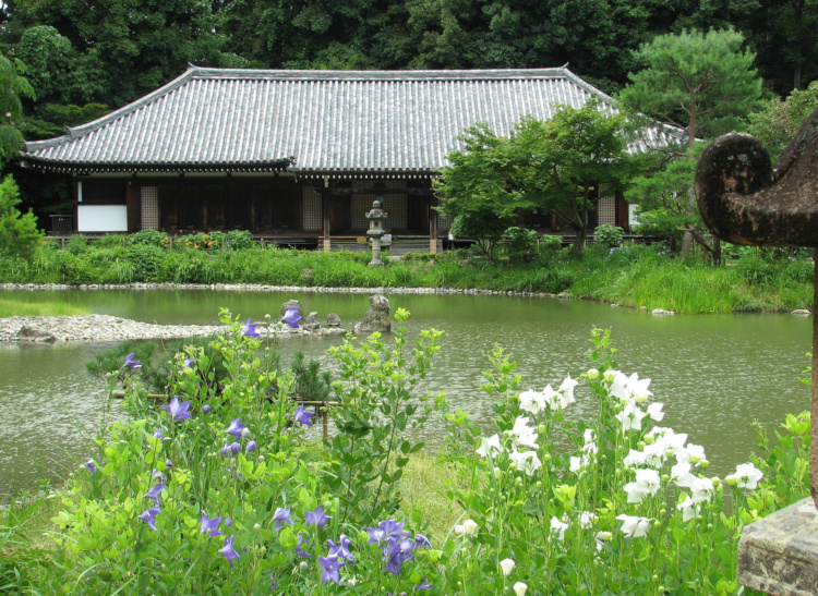 01_浄瑠璃寺本堂-750
