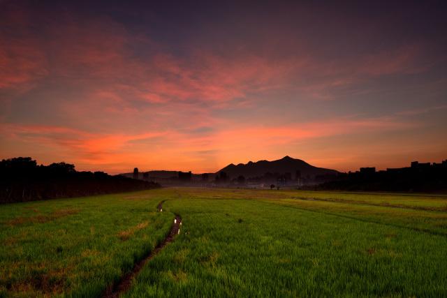 平原の夕暮れ(1)