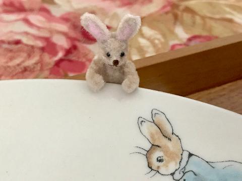peter_rabbit_2.jpg