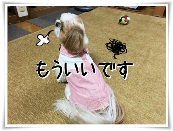 IMG_3432_1.jpg