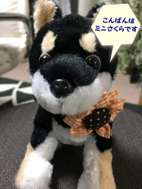 minisakura809.jpg